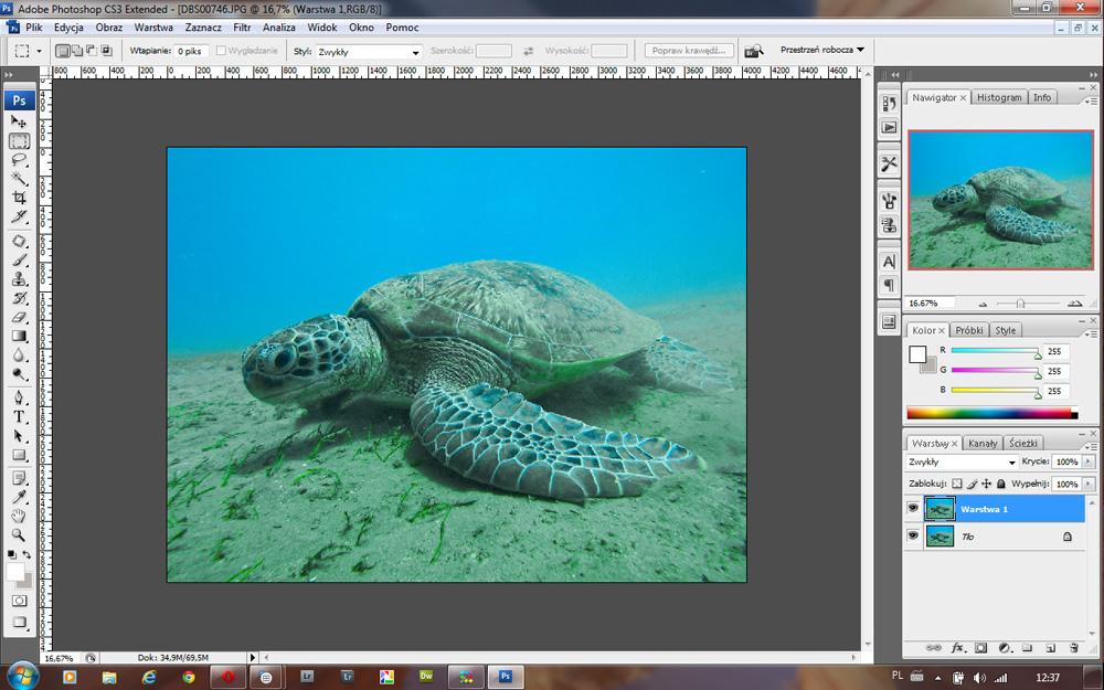 jak wywołać zdjęcie podwodne