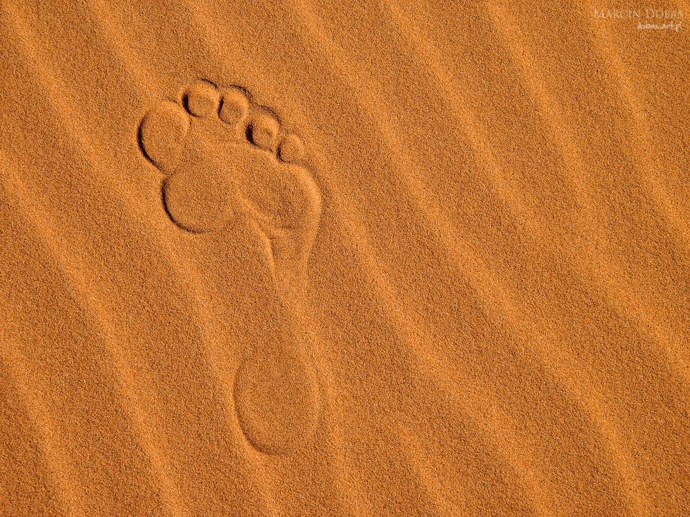 Sand dunes of Erg Chebbi in the Sahara Desert, Morocco.