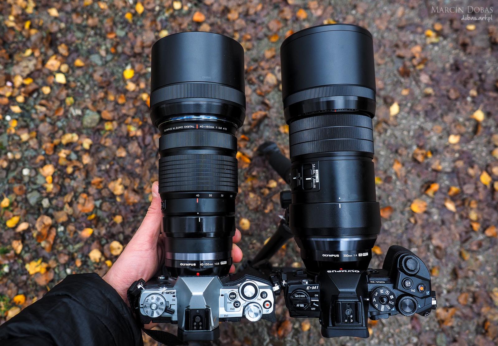 mzd 300 f/4 vs mZD 40-150 f/2.8