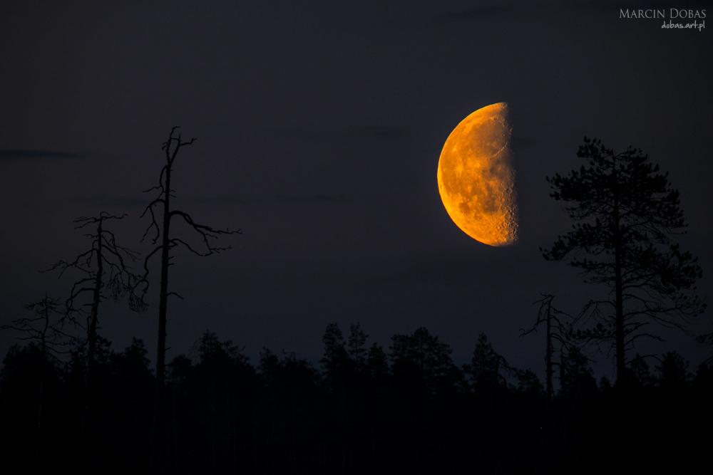 podwojna ekspozycja _ księżyc