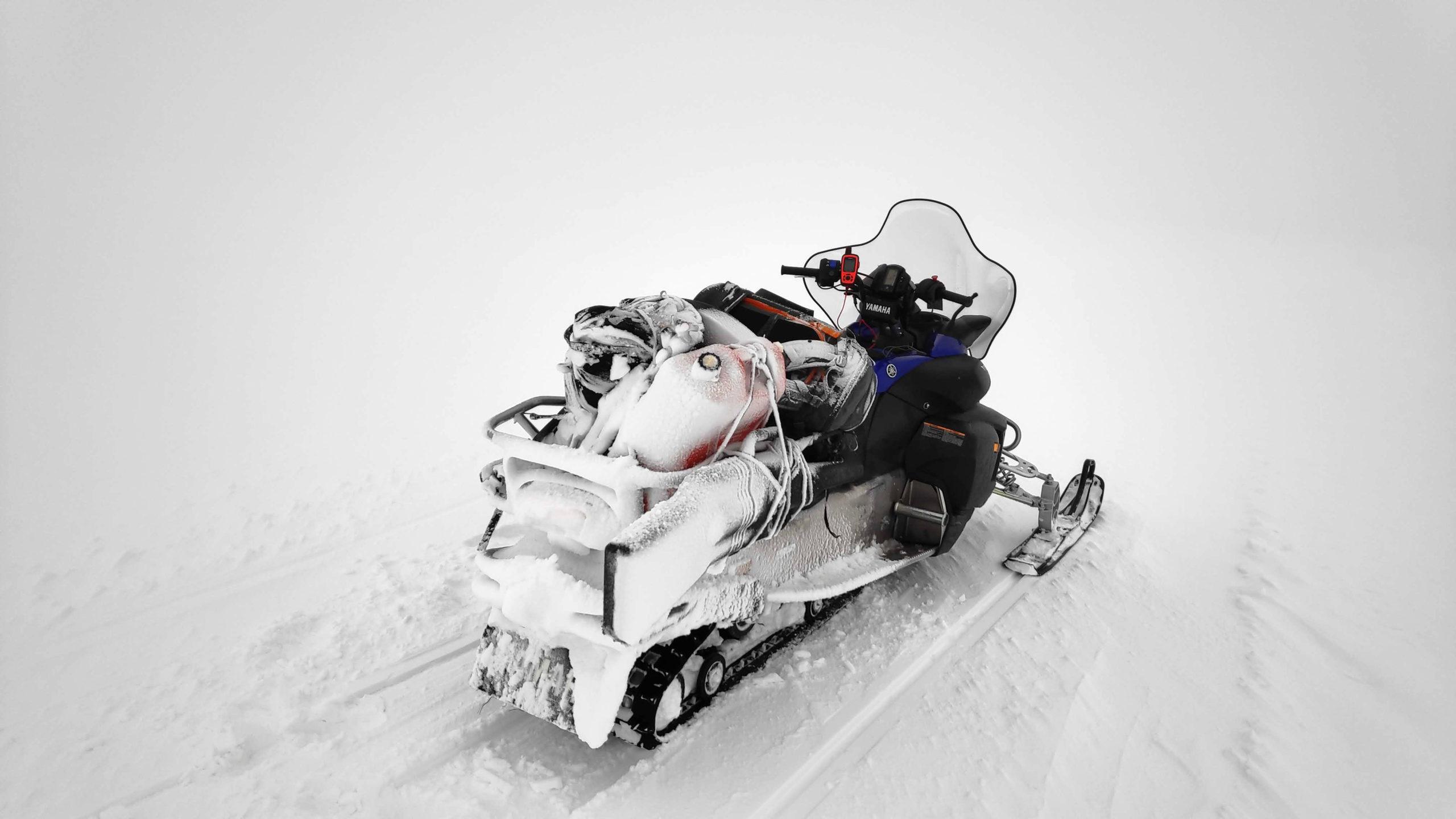 Svalbard Marcin Dobas